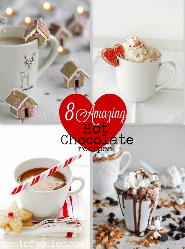 8 Amazing Hot Chocolate Recipes