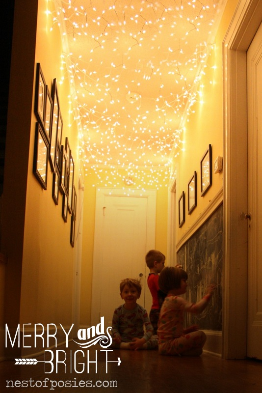 Ceiling Twinkle Lights: Without question ...,Lighting