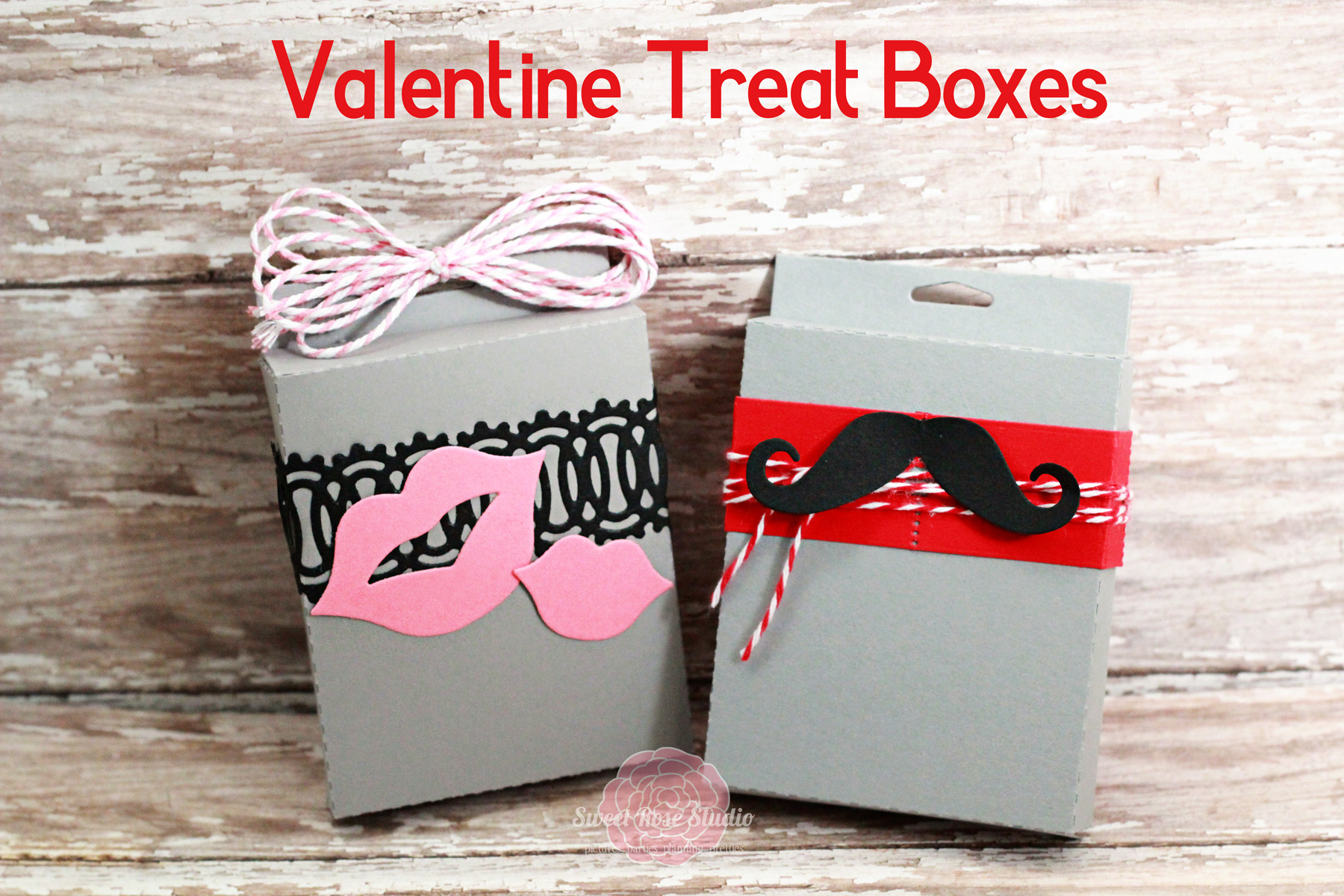33 Homemade Valentines Treat Bag Ideas Nest of Posies – Valentine Card Boxes Ideas