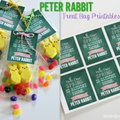 Peter Rabbit Treat Bag #Printables via @NestofPosies