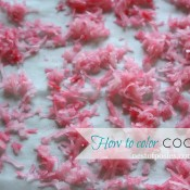How to color Coconut via @NestofPosies