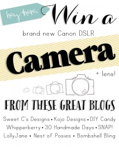 Win a CANON CAMERA + lens in time for the holidays!