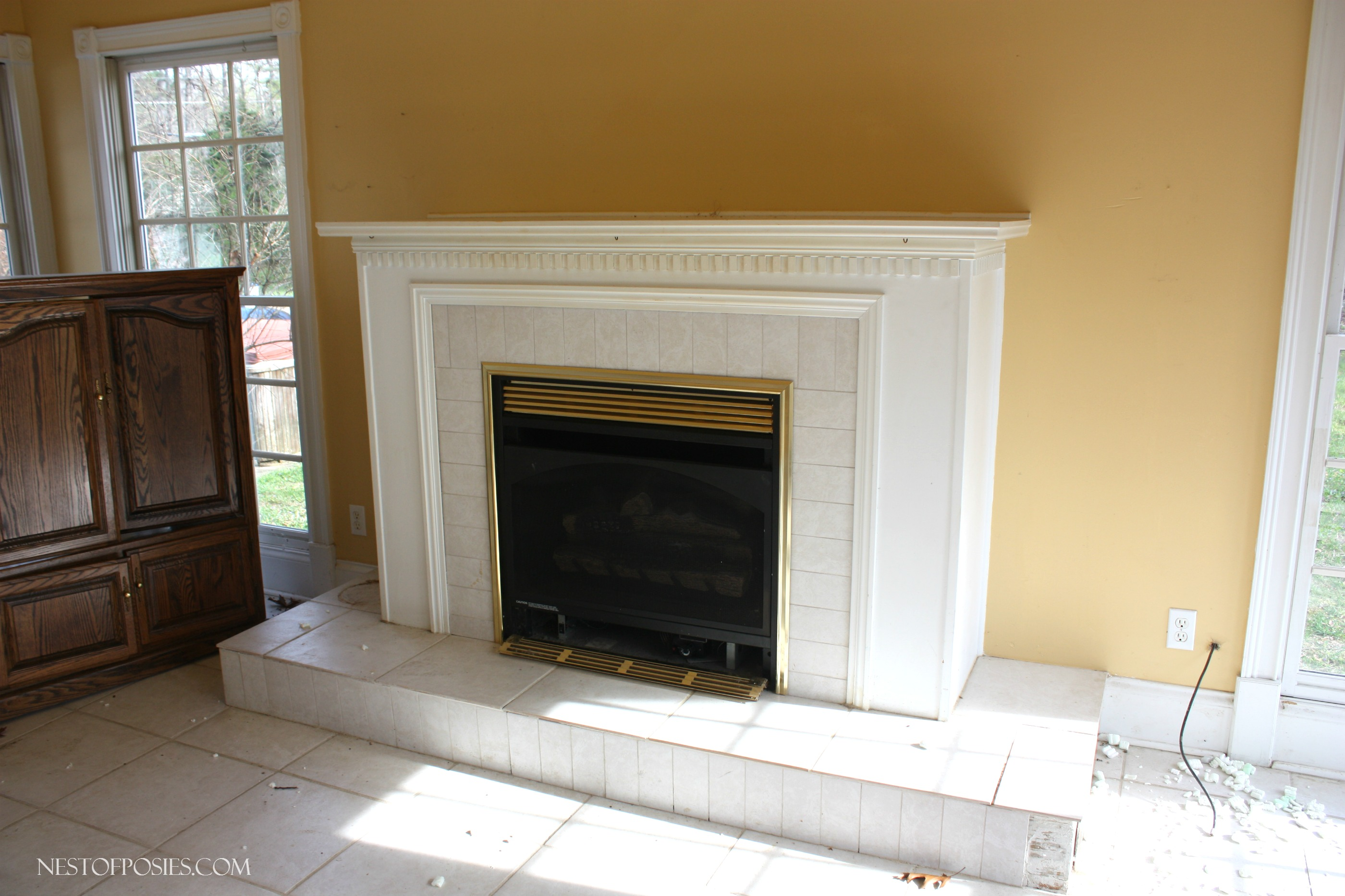 Gas Fireplace in the sunroom