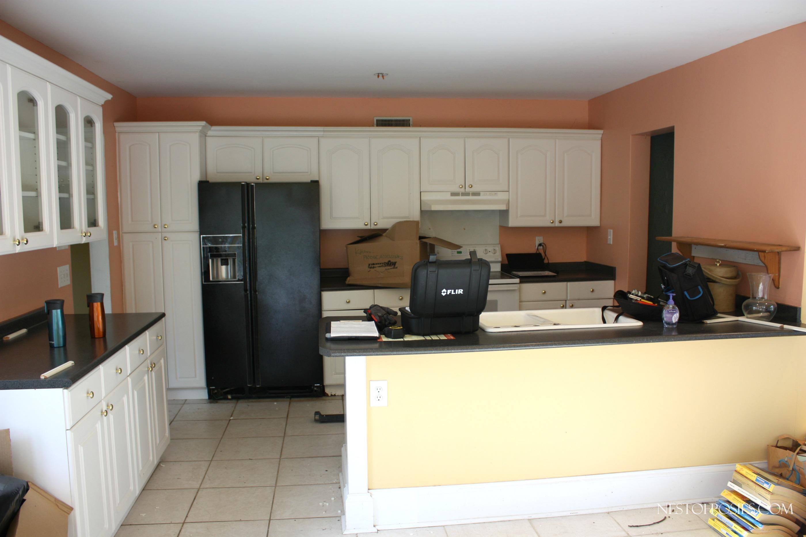 My foreclosure kitchen