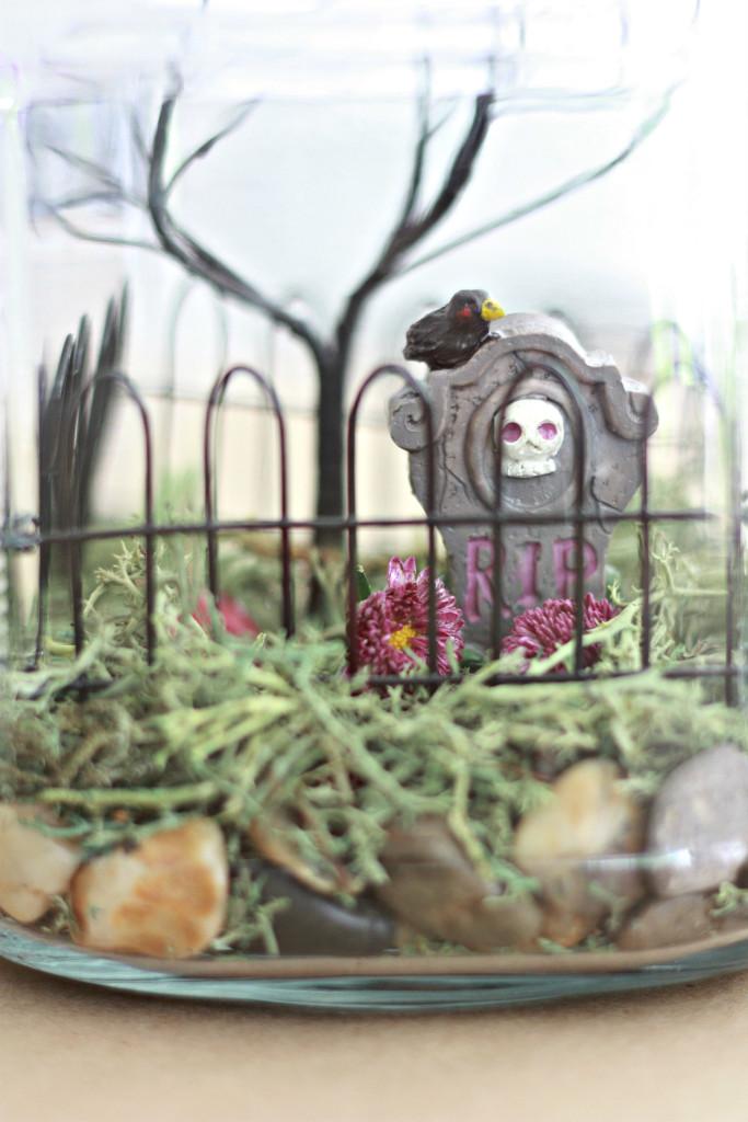 Make a Halloween Terranium