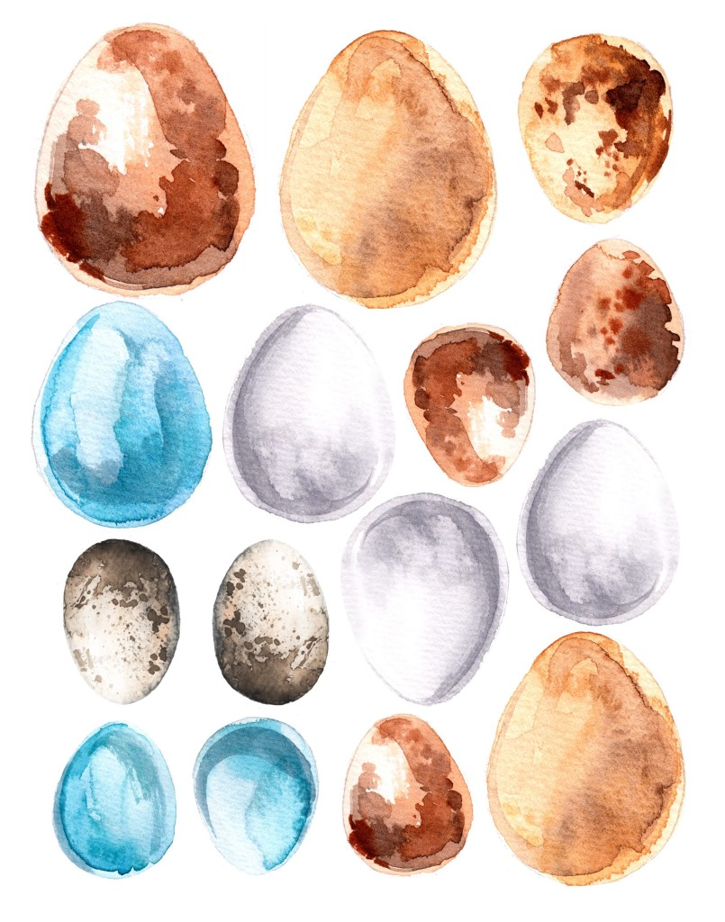 Watercolor Egg Free Download Printable 11x14
