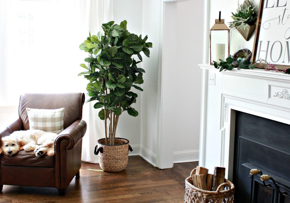 Accessorizing Your Living Room for the Everyday